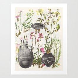 78. Art Print