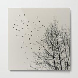 Come On Home - Graphic Birds Series, Plain - Modern Home Decor Metal Print