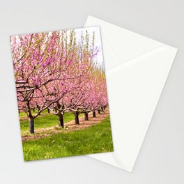 Pink Flowering Trees Stationery Cards