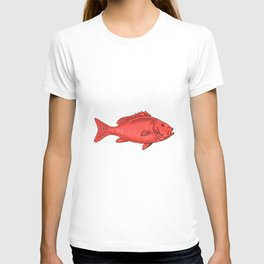 Australasian Snapper Swimming Drawing T-shirt