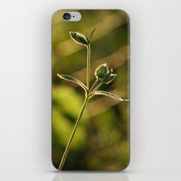 Wild garden flower iPhone Skin