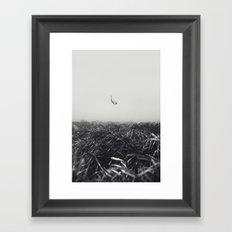 150929-0230 Framed Art Print