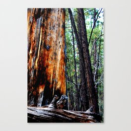 In The Zone. Canvas Print