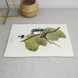 White-crowned Sparrow Rug