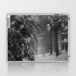 Winter Snow Laptop & iPad Skin