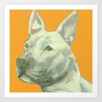 Pittbull printed from an original painting by Jiri Bures Art Print