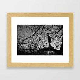 Boy in the Tree Framed Art Print