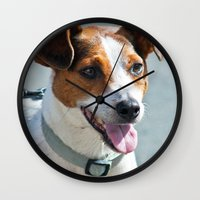 jack russell Wall Clocks featuring Jack Russell by Doug McRae