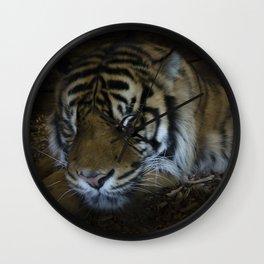 Sleeping tiger painterly Wall Clock