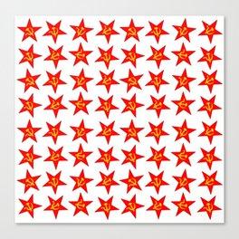 USSR red star pattern Canvas Print