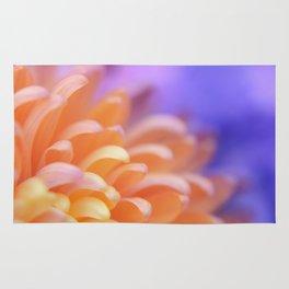 Flower Sunrise | cute pastel flower, peach flowers, orange floral pattern, pretty petals, macro Rug