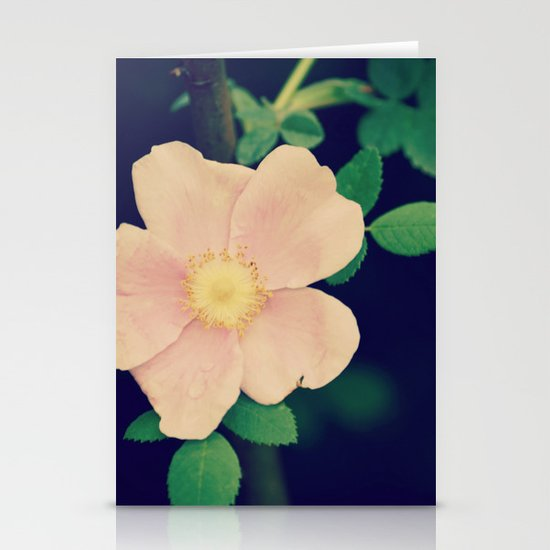 Perfectly Pretty Stationery Cards