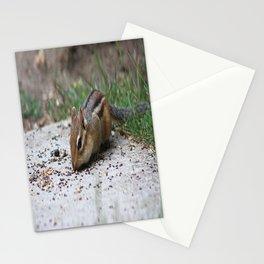 Chipmunk Stationery Cards