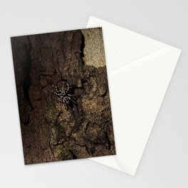 Spider on Wood Stationery Cards