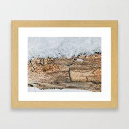 Wood Branch Framed Art Print