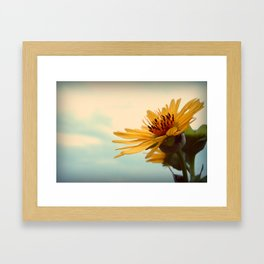 Facing the Sky Framed Art Print