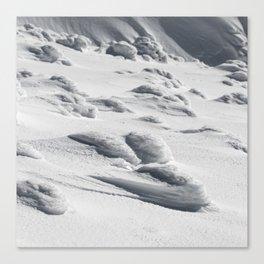 Frozen snow sculptures on Snežnik, Slovenia Canvas Print