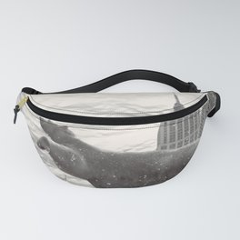disenthrall Fanny Pack