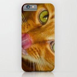 Cat licks its nose iPhone Case