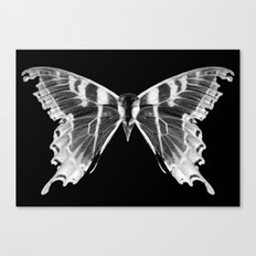 Wings and Skull #5 Canvas Print