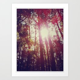 Forever Shining Through Art Print
