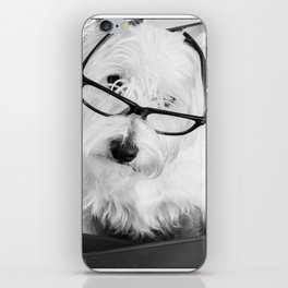 Really? Cute Westie Dog Wearing Glasses iPhone Skin