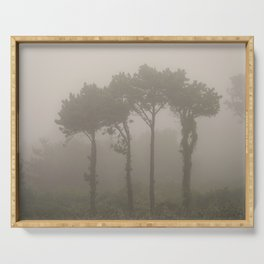 Four Pine Trees in the Fog Serving Tray