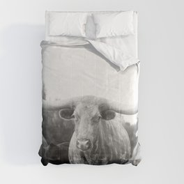 Texas Longhorn and Friends Comforters