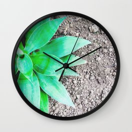 green leaf plant with sand background Wall Clock