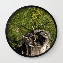 Life Finds a Way Wall Clock