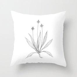 Ribwort Throw Pillow