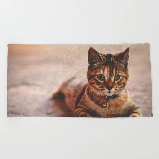 Cute Young Tabby Cat Kitten Kitty Pet Beach Towel