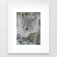 koala Framed Art Prints featuring Koala by Cordula Kerlikowski