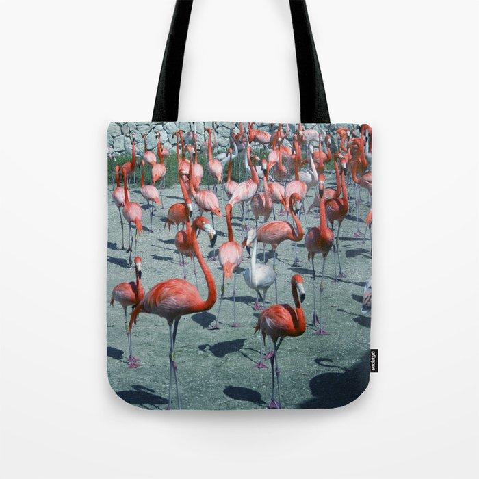 Flamingo 4 Tote Bag