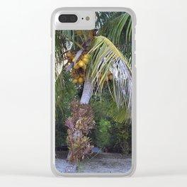 Coconut Palm - Cocos nucifera Clear iPhone Case