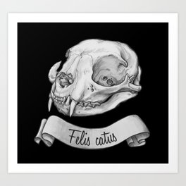 Cat skull in ink Art Print