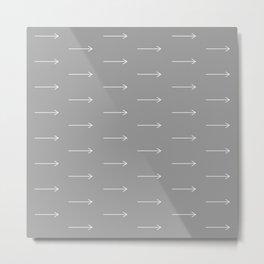 AAROWS grey Metal Print
