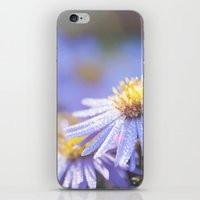 biology iPhone & iPod Skins featuring Blue Aster in LOVE I by UtArt