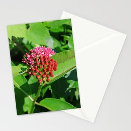 Couched in Your Indifference Stationery Cards