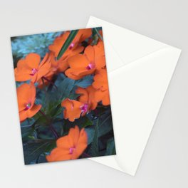 Longwood Gardens Autumn Series 330 Stationery Cards