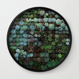 Field of Succulents Wall Clock