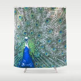 Pleasing Peacock Shower Curtain