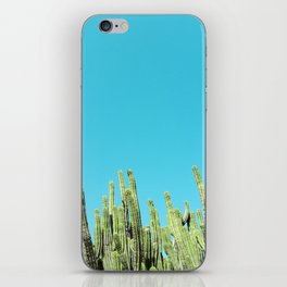 Desert Cactus Reaching for the Blue Sky iPhone Skin