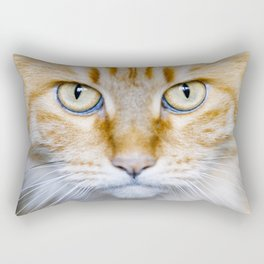 Portrait of a cat with big eyes. Rectangular Pillow