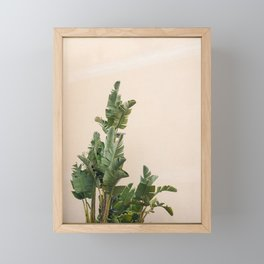 Tropical palms on pastel   Lush greenery in the South of France   Botanical art print Framed Mini Art Print