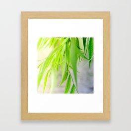 Nature photography green leaf II Framed Art Print