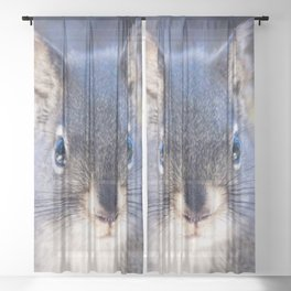 Watercolor Pine Squirrel 04, Greetings from the Treetops Sheer Curtain