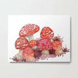 Mushroom castle Metal Print