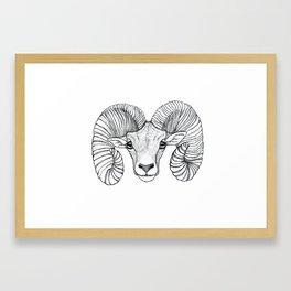 Ram Head Framed Art Print
