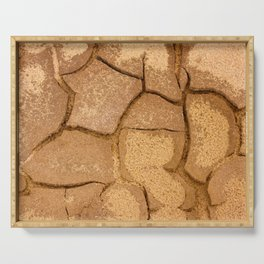 Cracked terrain texture Serving Tray